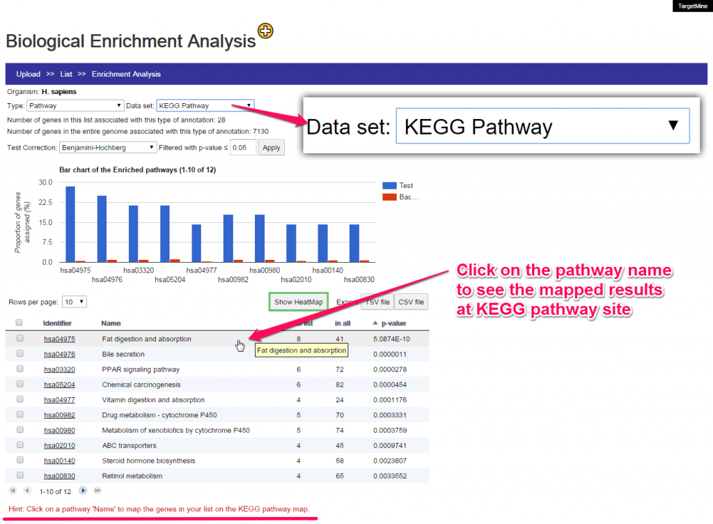 Clicking on the pathway name will show your enrichmed results in KEGG pathway web site.
