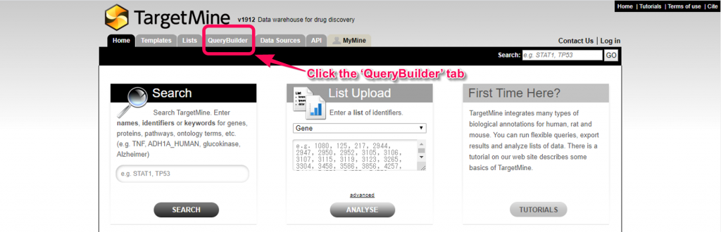 Find the 'Query Builder' tab in TargetMine