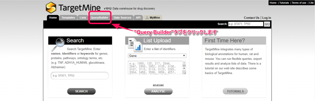 "TargetMineの""Query Builder""タブをクリックします。"